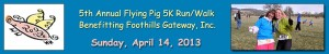 2013 Flying Pig Logo