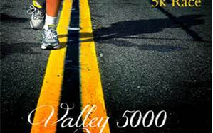 2013 Valley 5000